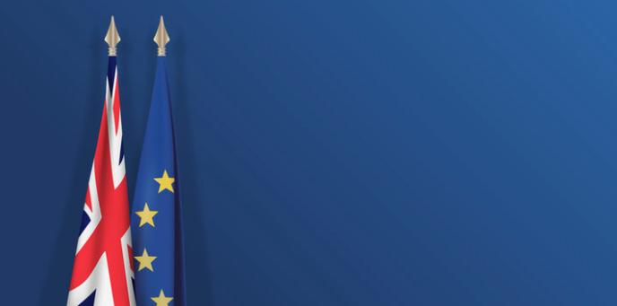 L'importatore in Gran Bretagna e la dichiarazione doganale